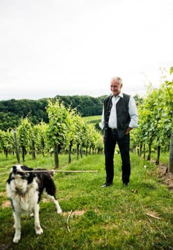 Josef in den Weingärten mit Hund Rico