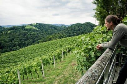 Reinhard mit Blick auf die Weingärten